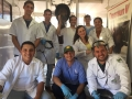 Odontologia_Equina_(12)