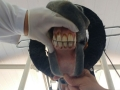 Odontologia_Equina_(19)